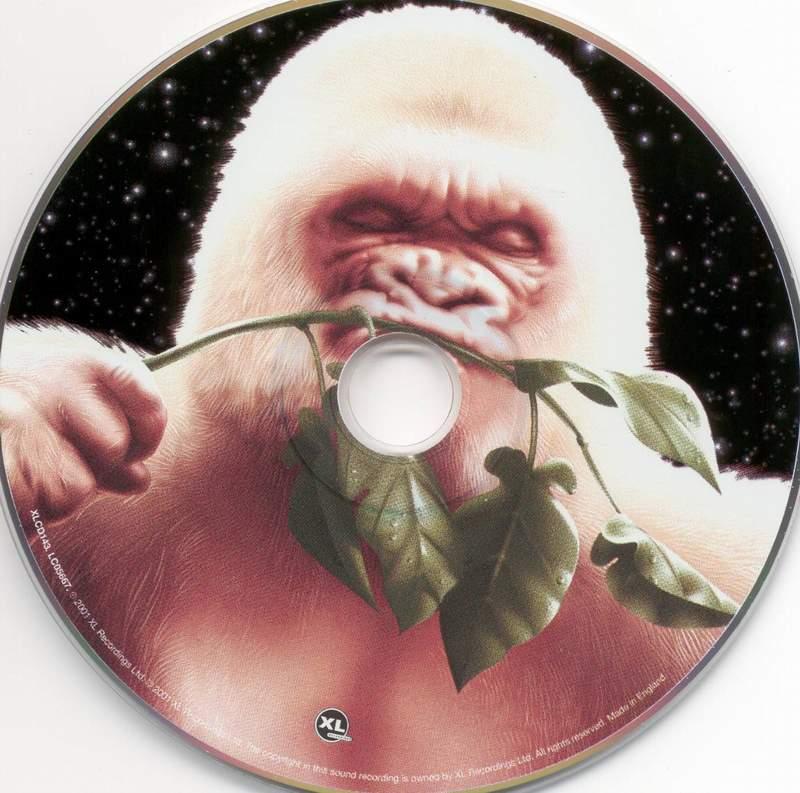 cd basement jaxx rooty cd scarica la cover cd basement jaxx