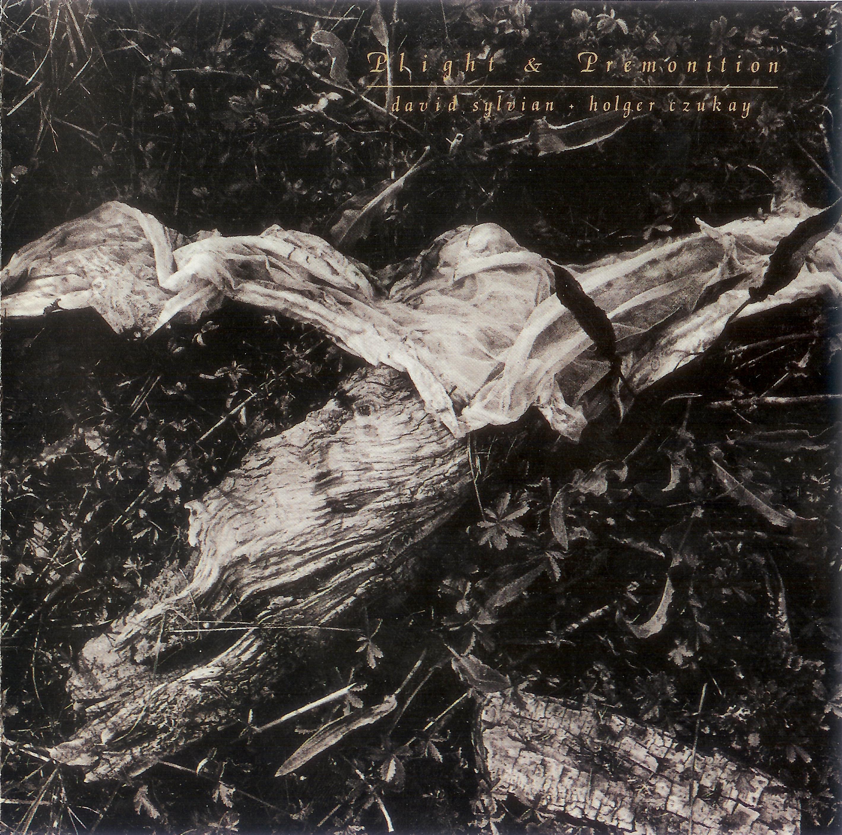 David Sylvian - Holger Czukay - Words With The Shaman